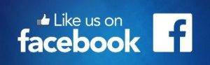 pp-facebook-like